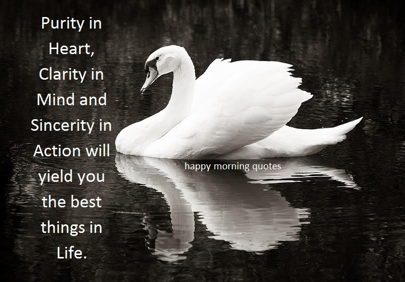 purity-in-heart