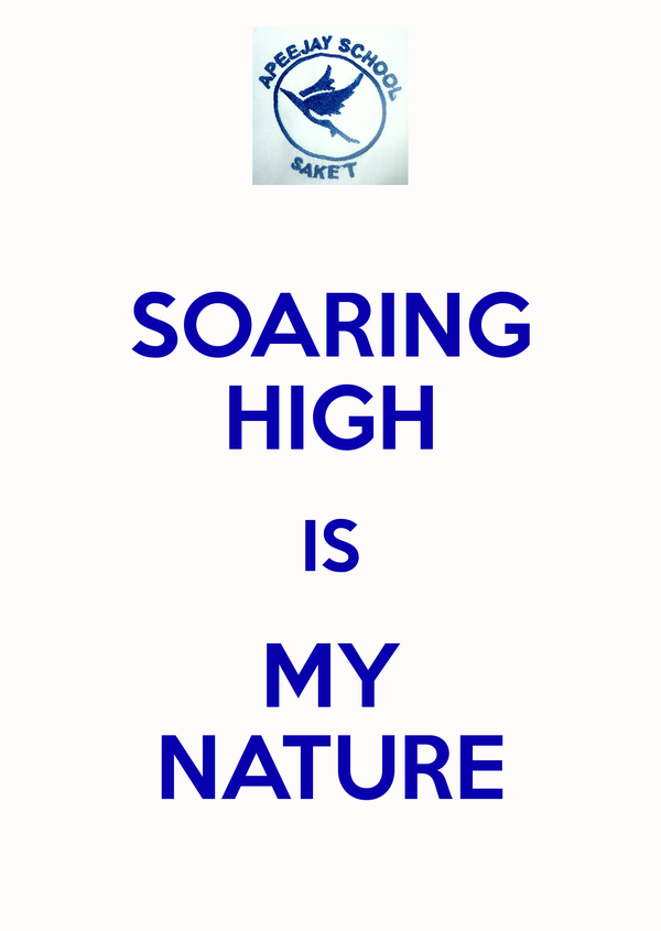 soaring-high-is-my-nature-3