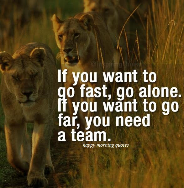You Need a team!